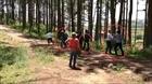 Bắt khẩn cấp kẻ chiếm đất rừng, hành hung Phó Chủ tịch phường