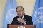LHQ kêu gọi đoàn kết nhân Ngày Quốc tế Hòa bình