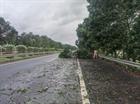 Nguy cơ mất ATGT trên cao tốc mùa mưa bão