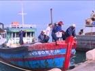 Quảng Ngãi: Thiếu bến neo đậu tàu thuyền mùa mưa bão