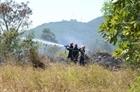 Kịp thời dập tắt vụ cháy rừng trên núi Sơn Trà
