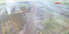 Khống chế vụ cháy rừng tràm phòng hộ ở Hòn Đất