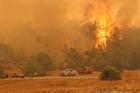 Thổ Nhĩ Kỳ: Cháy rừng khiến 3 người thiệt mạng