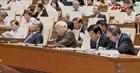 Quốc hội bầu các thành viên Hội đồng Bầu cử quốc gia và Hội đồng Quốc phòng - An ninh