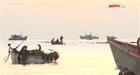 Quảng Ngãi: Ngư dân trúng lộc tôm nhí đầu năm