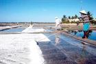 Nhọc nhằn nghề muối Sa Huỳnh