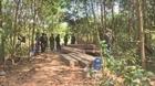 Tạm giữ hình sự Trưởng thôn tham gia phá rừng