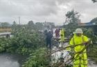 Tổng hợp thiệt hại ban đầu do bão số 9 tại các địa phương