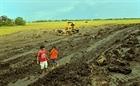 Suy kiệt đất nông nghiệp tại đồng bằng sông Cửu Long