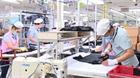 Phục hồi thị trường lao động trong trạng thái bình thường mới