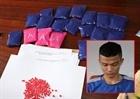 Công an huyện Bố Trạch phá chuyên án thu hơn 4.000 viên ma túy
