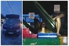 Tiếp tục phát hiện 2 người trốn trong thùng xe tải vào Sơn La