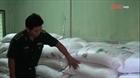 Bắt vụ buôn lậu 5,5 tấn đường cát qua biên giới