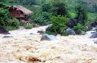 Thiệt hại về người, tài sản do mưa lũ