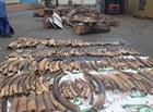 2 tấn ngà voi, vảy tê tê ngụy trang trong container gỗ