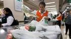 Chile chính thức cấm sử dụng túi nylon