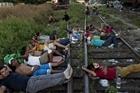Mexico bắt gần 800 người di cư từ các nước Trung Mỹ