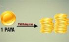 Rủi ro khi đầu tư vào tiền ảo Paya