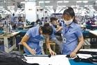 Thủ tướng Nguyễn Xuân Phúc: Tình hình kinh tế - xã hội ngày càng tốt hơn