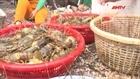 Diện tích nuôi trồng thủy sản thiệt hại nặng nề do lũ