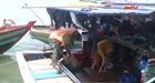 Bắt giữ 3 tàu cá khai thác hải sản trái phép