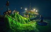 Phiên biển cuối mùa cá cơm