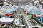 Xuất khẩu thủy sản sẽ tiếp đà tăng trưởng trong quý II