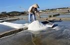 Muối Sa Huỳnh được giá nhưng mất mùa