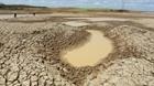 Công điện của Bộ Công an ứng phó xâm nhập mặn, thiếu nước ngọt tại ĐBSCL