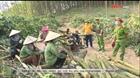 Quảng Ninh ngăn chặn dịch bệnh xâm nhập qua đường rừng, lối mòn