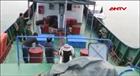 BĐBP Quảng Ngãi chống buôn lậu xăng dầu trên biển