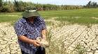 Đắk Lắk: Hạn hán trên diện rộng, diễn biến phức tạp