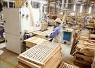 Giải pháp khôi phục ngành chế biến xuất khẩu gỗ sau dịch bệnh