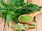 Việt Nam sử dụng thuốc xuyên tâm liên điều trị COVID-19