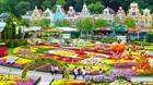Lễ hội hoa Tulip khoe sắc ở Hàn Quốc
