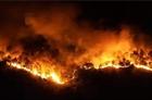 Cháy rừng tiếp tục hoành hành
