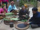 Văn hóa ẩm thực của người Thái Tây Bắc