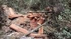 Làm rõ 7 đối tượng trong vụ phá rừng quy mô lớn tại Mđrắk