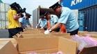 Hải Phòng: Phát hiện container chứa khoảng 2,5 tấn lá khát