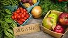 Mập mờ thị trường sản phẩm hữu cơ