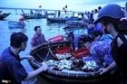 Đi chợ cá Cồn Gò lúc tinh mơ