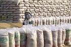 Điều tiết xuất khẩu linh hoạt đảm bảo an ninh lương thực