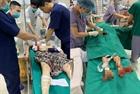 Án mạng ở Phú Thọ, giết vợ rồi treo cổ tự tử