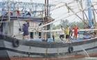 Các địa phương chạy đua chuẩn bị trước khi bão đổ bộ