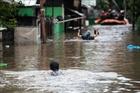 Indonesia: Lũ lụt nghiêm trọng khiến 5 người thiệt mạng