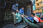 Chung tay giải cứu nông sản giúp người nông dân Hải Dương