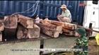 Bắt vụ buôn lậu gỗ và đá quý hiếm quy mô lớn