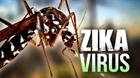 Bình Dương công bố dịch bệnh do vi rút Zika quy mô xã, phường