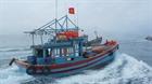 Ngư dân Quảng Ngãi giong thuyền ra khơi