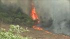 Quảng Bình: cháy rừng trên diện rộng